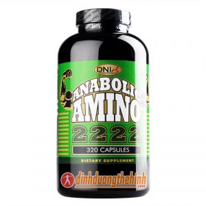 Anabolic Amino 2222 DNI 320 Capsules