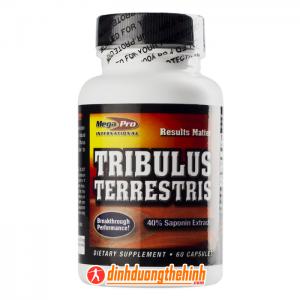 tribulus terrestris 60 capsules